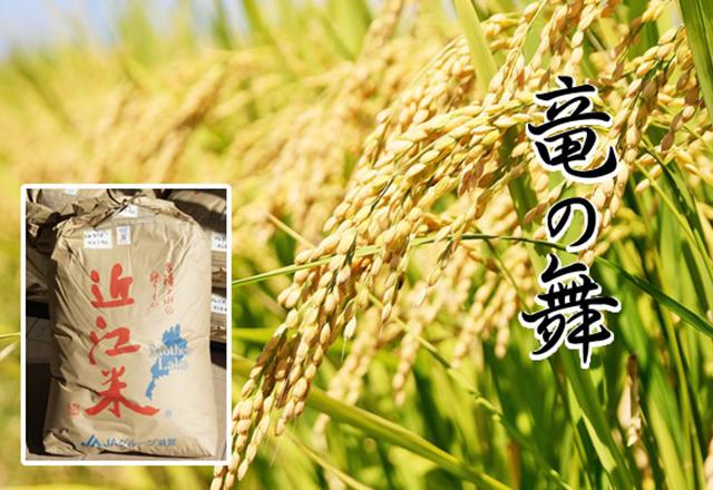 竜王産 お米